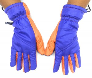 Mountain Waterproof Insulated Gloves