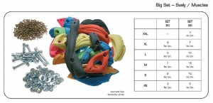 Makak Climbing Holds - Muscles  (bolt & nut included)